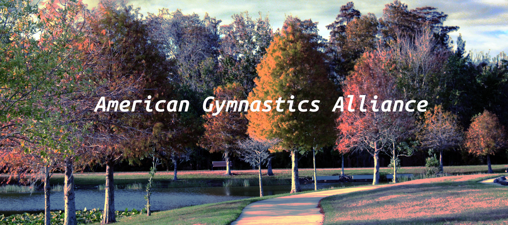 American-Gymnastics-Alliance-b1