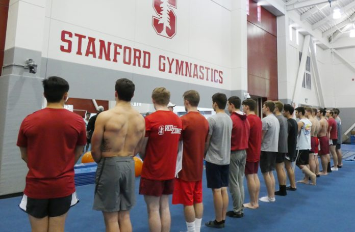 Stanford Gymnasts Modi, Sheppard Set for World Championships