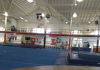 Week 3 Recap NCAA Gymnastics. Paradise, Illinois Gymnastics Finish Strong at Windy City Invite
