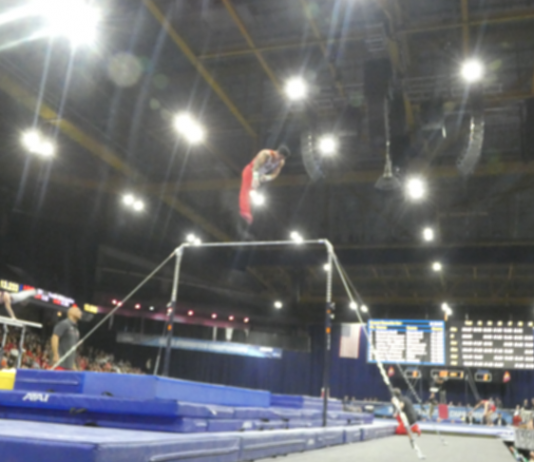 FIG Point System Not Good for NCAA Men's Gymnastics